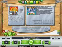 Flowers Slot - tabela wypłat
